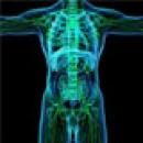 Детоксикация, выведения токсинов, очистка организма