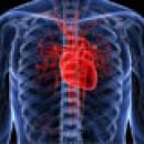 Для здоровья сердца и сосудов