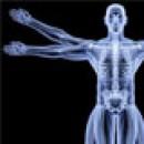 Для костей и опорно-двигательного аппарата
